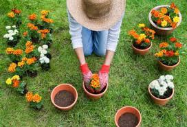 giardinaggio con guanti e cappello