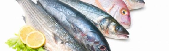 La Dieta del Pesce
