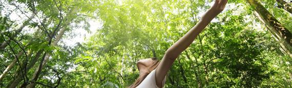 5 Mosse depura tossine e ricarica energia